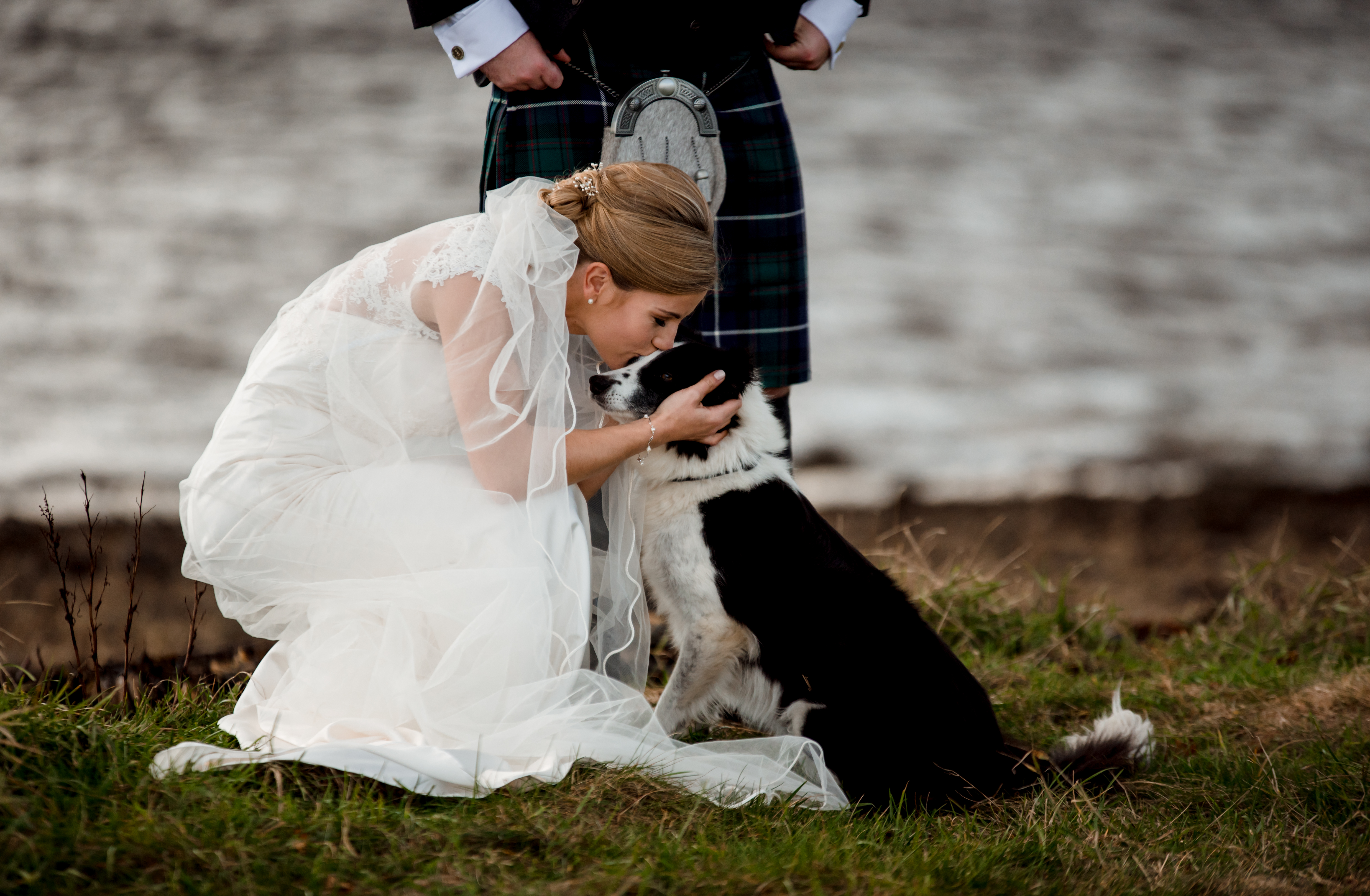 dog with bride
